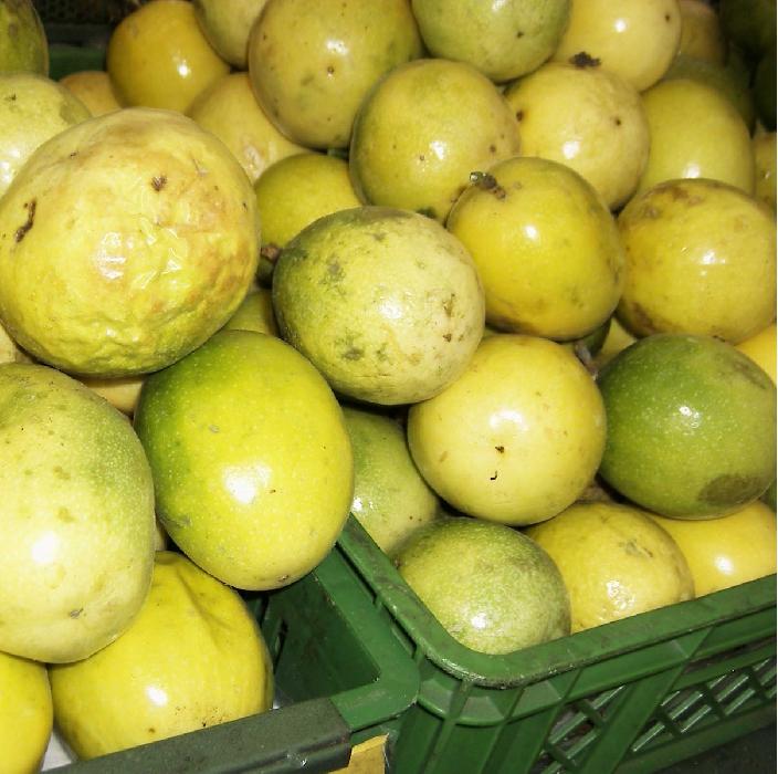 passion-fruit- tropical fruit