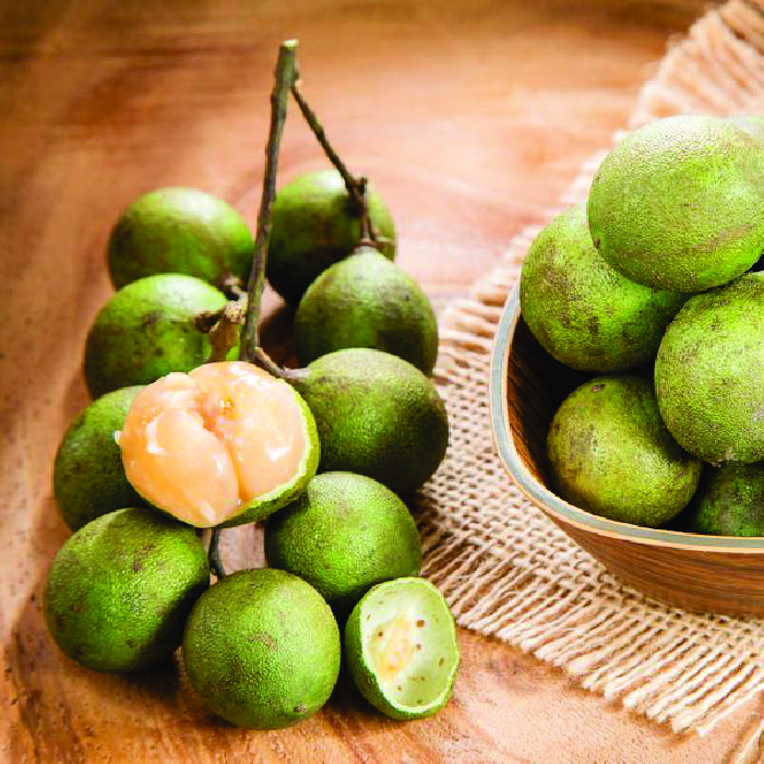 The Spanish lime (quenepe) Tree is a treat to the eyes as the vibrant, yellow fruit is filled with its juicy, sweet taste that bursts in the mouth loaded with flavor. People normally use its juice to make alcoholic beverages and other beverages as its tangy flavor fits ideal for a festive drink anytime around Christmas or a barbeque night during summer.